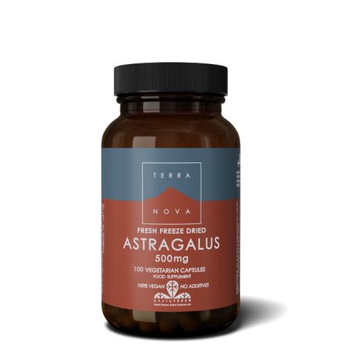 Terranova Astragalus 500mg - 100 capsules