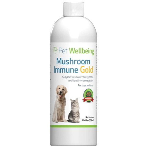Pet Wellbeing Mushroom Immune Gold for Cats and Dogs - 236ml