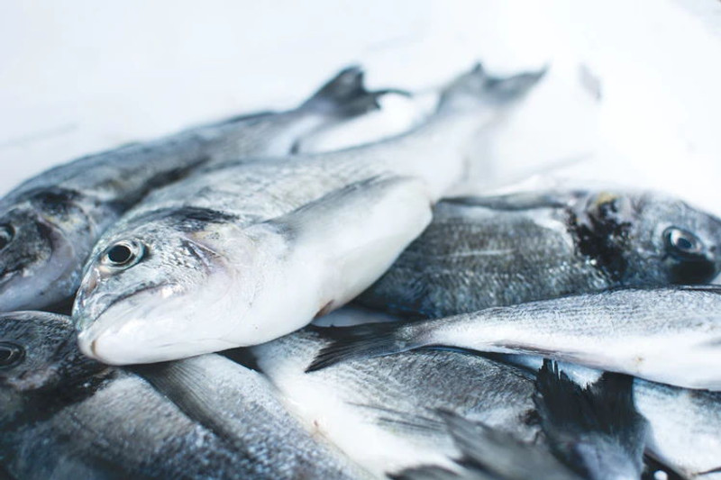 10 Fish Oils to consider this Spring