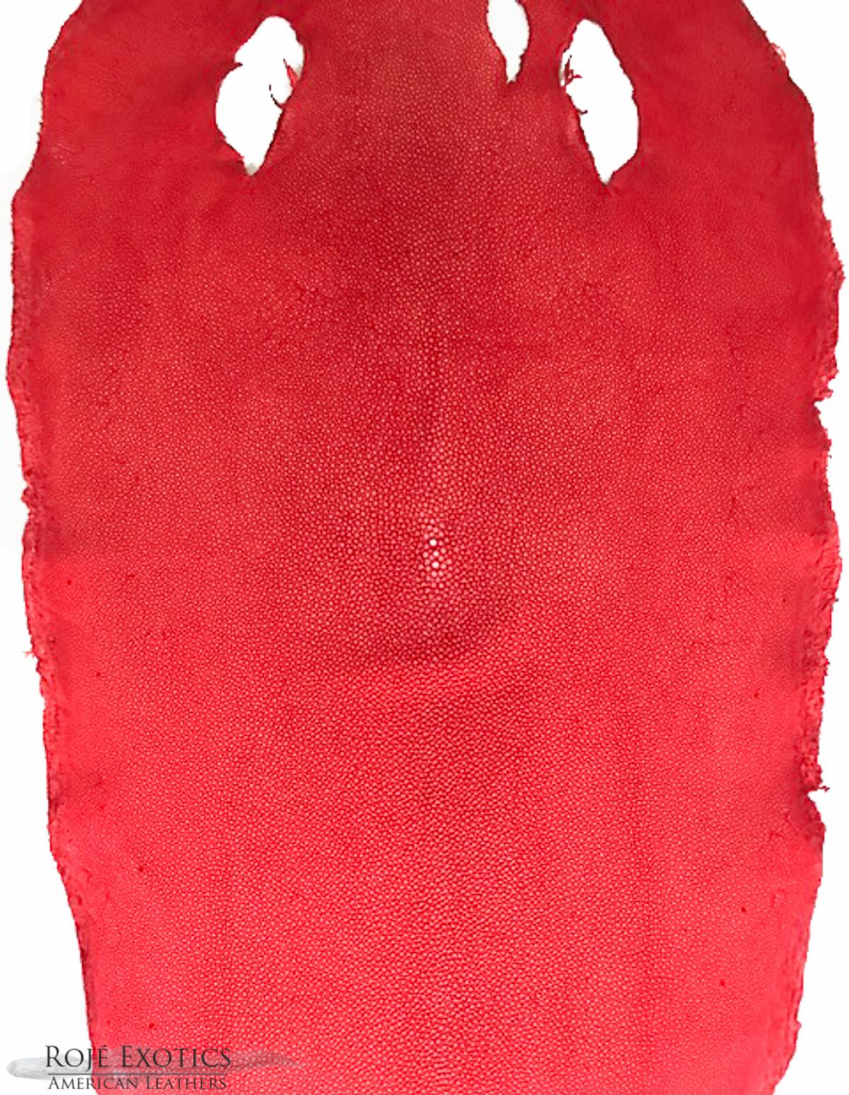 Stingray Leather Tomato Colour Polished Shagreen Finish 9  23cm