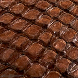 Pirarucu ( Arapaima) Chocolate Glazed-  XL