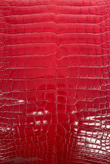 American Alligator - Belly - Scarlet Red - Millennium