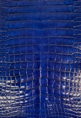 American Alligator - Belly - Deep Royal Blue - Millennium