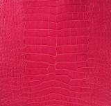 American Alligator - Belly - Pink - Millennium