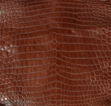 Nile Crocodile Belly -  Matte - Cigar