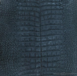 "American Alligator - Belly -  ""Suede"" - Navy Blue"