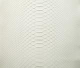 Python Molurus - Back Cut - White - Matte