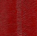 Genuine Eel Skin Panel - Red