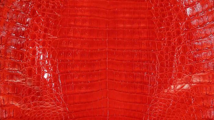 Caiman Belly Skin - Glazed - Red (38cm)