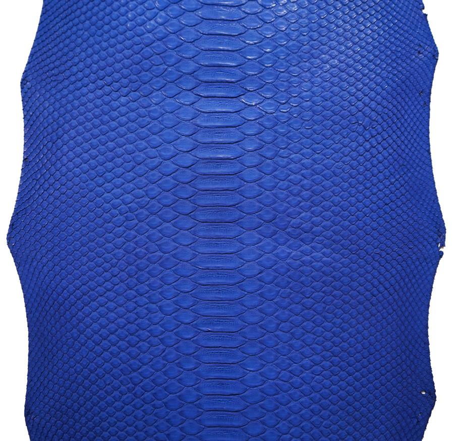 Python Short Tail - Royal Blue Matte - Back Cut