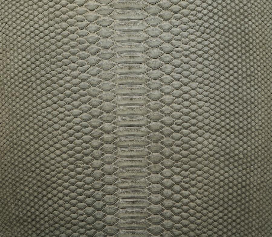 Python Short Tail - Grey Matte - Back Cut