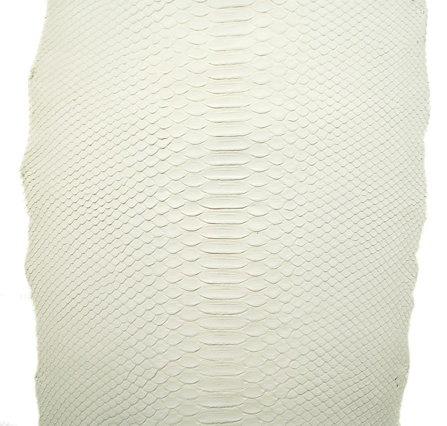 Python Short Tail - White Matte - Back Cut