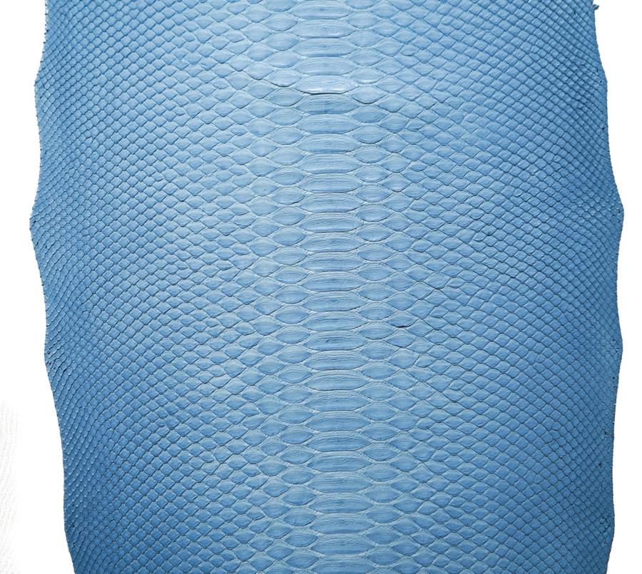Python Short Tail - Baby Blue Matte - Back Cut