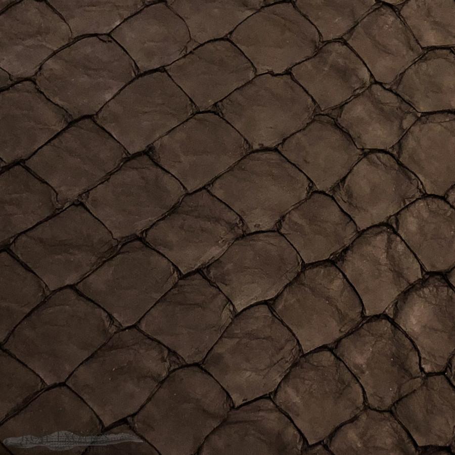 Pirarucu ( Arapaima)  Black Matte -  XL