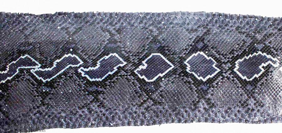 Python Front Cut  - HandPainted - (17B10-B)