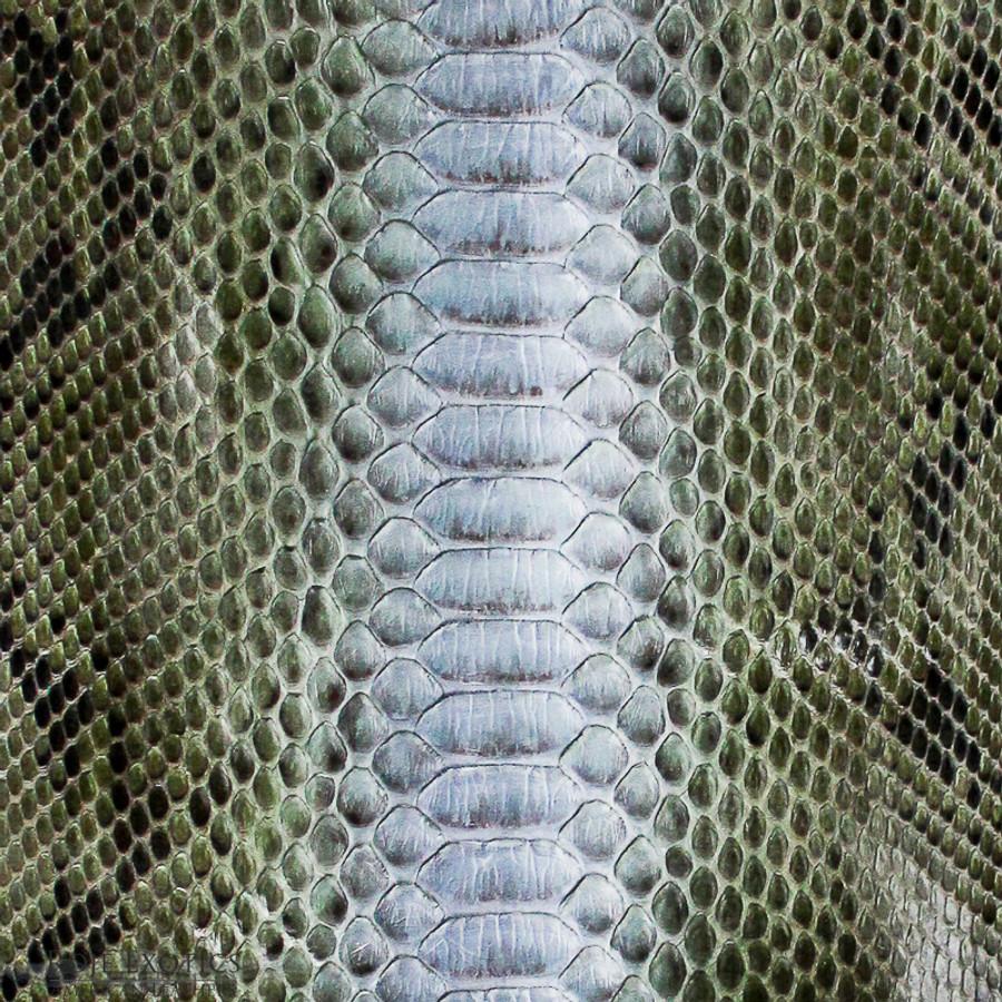 Python Back Cut  - HandPainted - (17E11-D)