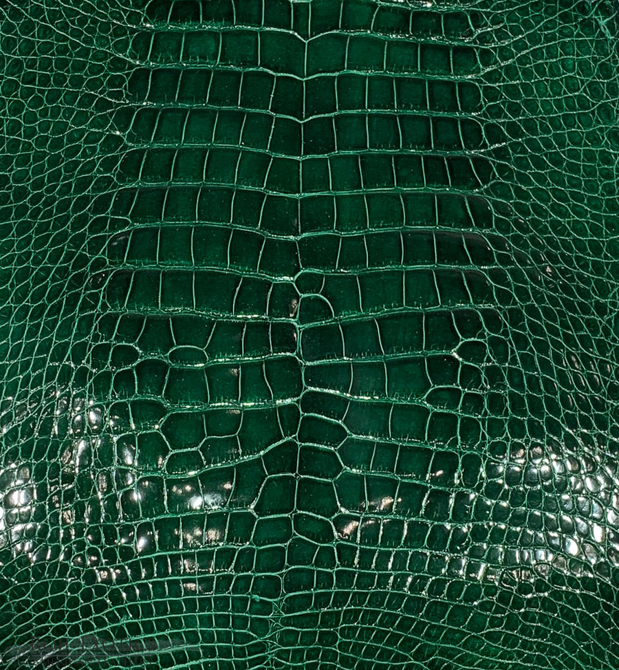 "American Alligator - Belly - Emerald Green - ""Classic"" Glazed"