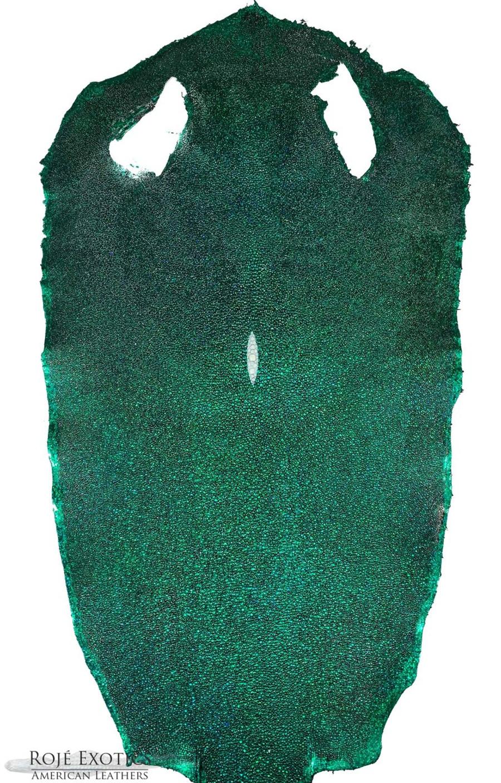Stingray Skin - Hologram Finish - Green