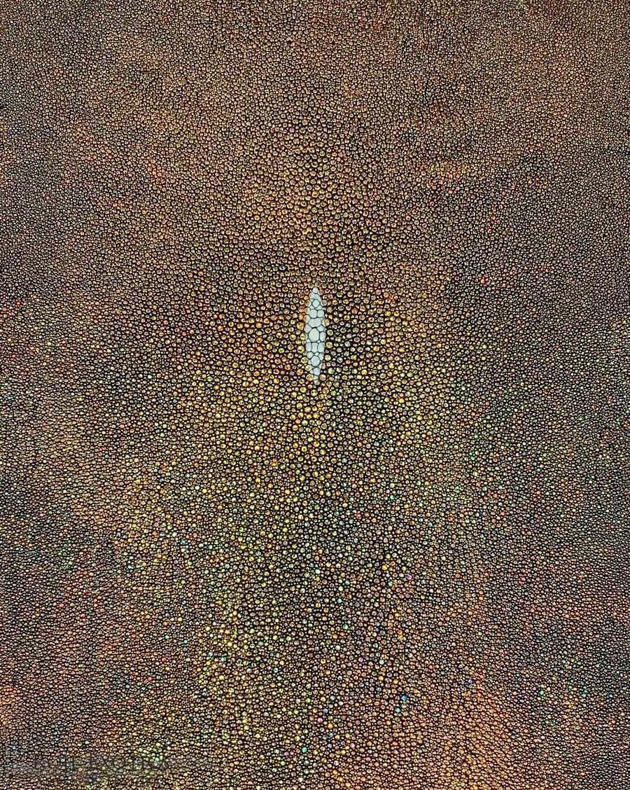 Stingray Skin - Hologram Finish - Gold