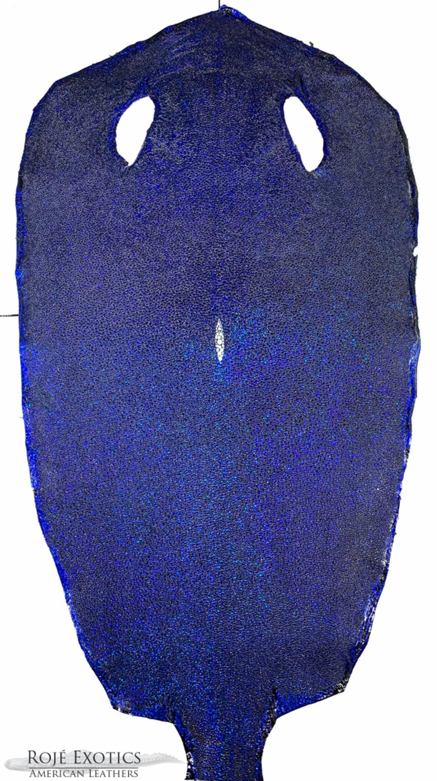 Stingray Skin - Blue - Hologram Finish