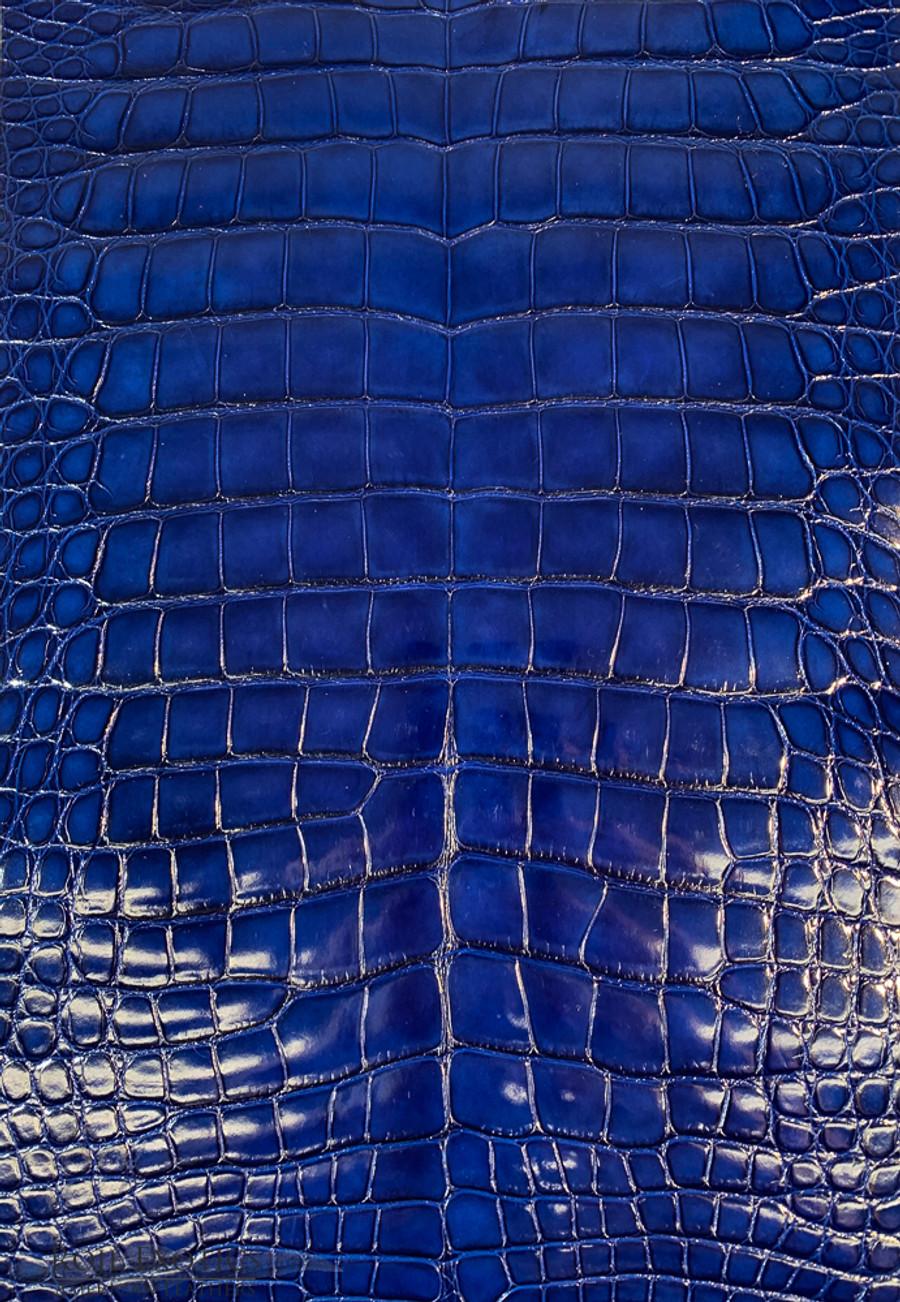 American Alligator - Belly - Deep Royal Blue - Millennium