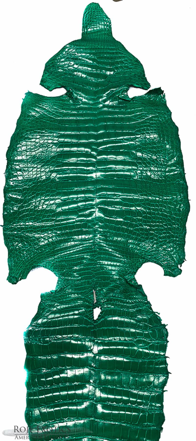 American Alligator - Belly - Kelly Green - Millennium