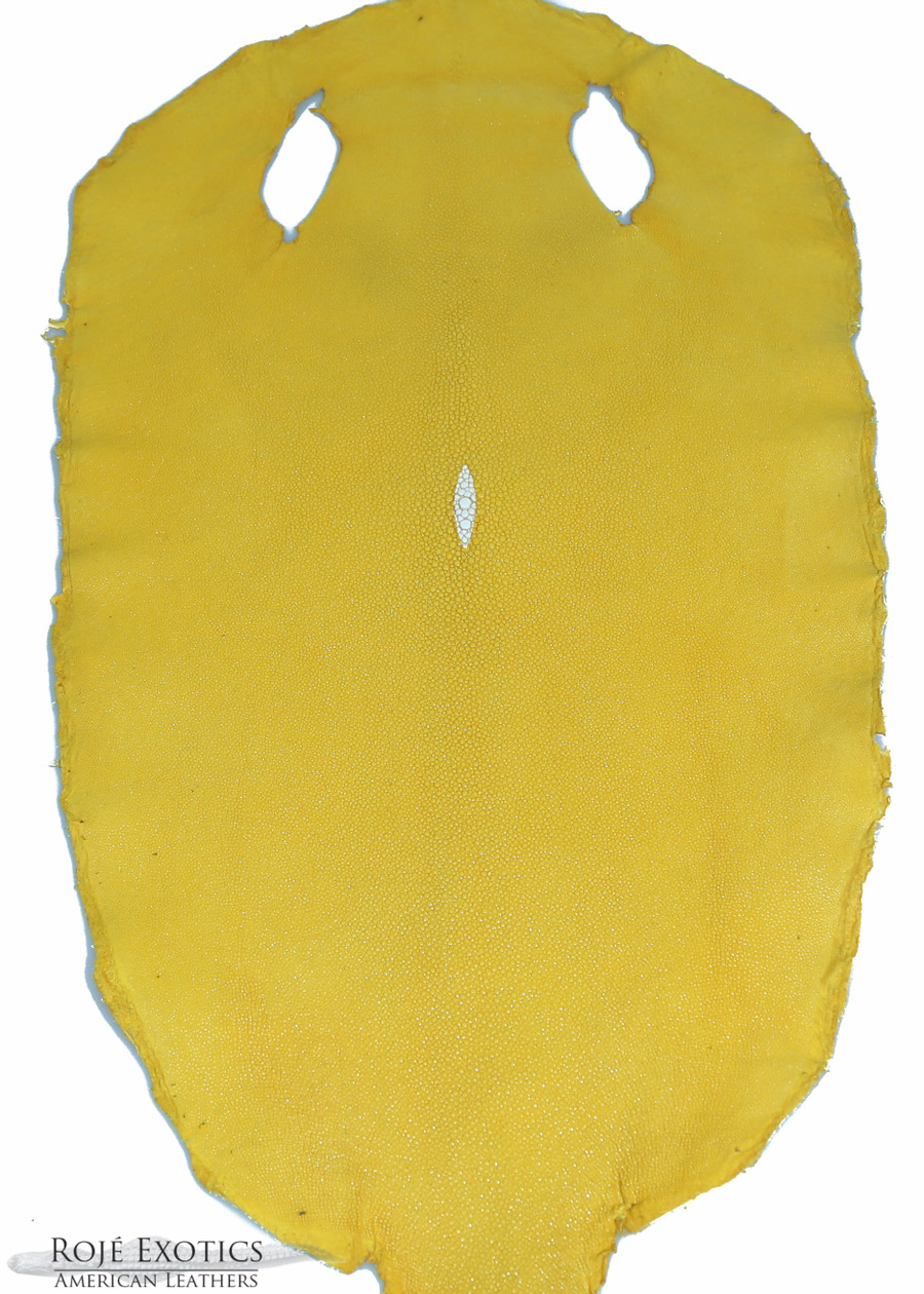 Stingray -Saffron Yellow - Caviar Finish