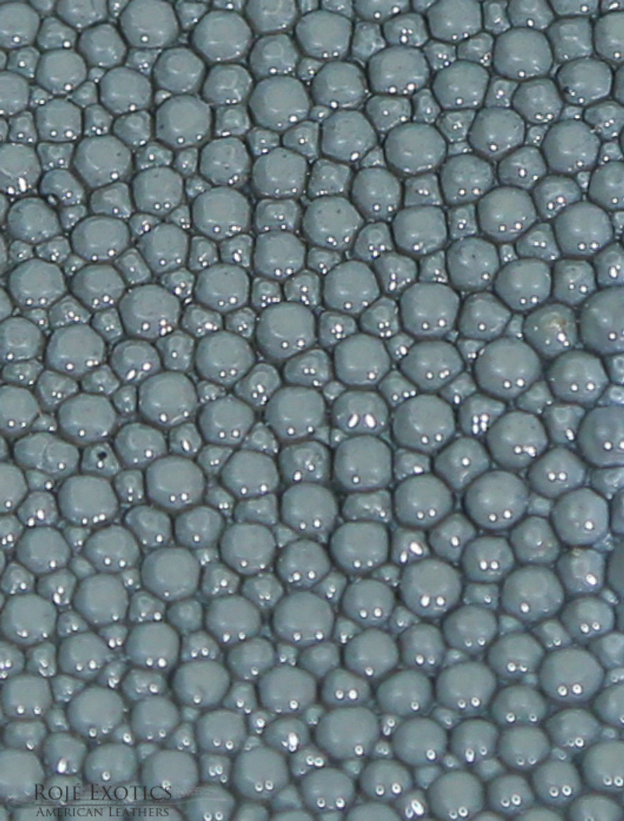 Stingray - Slate Grey - Caviar Finish