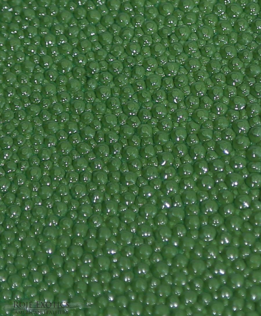 Stingray - Olive Green - Caviar Finish