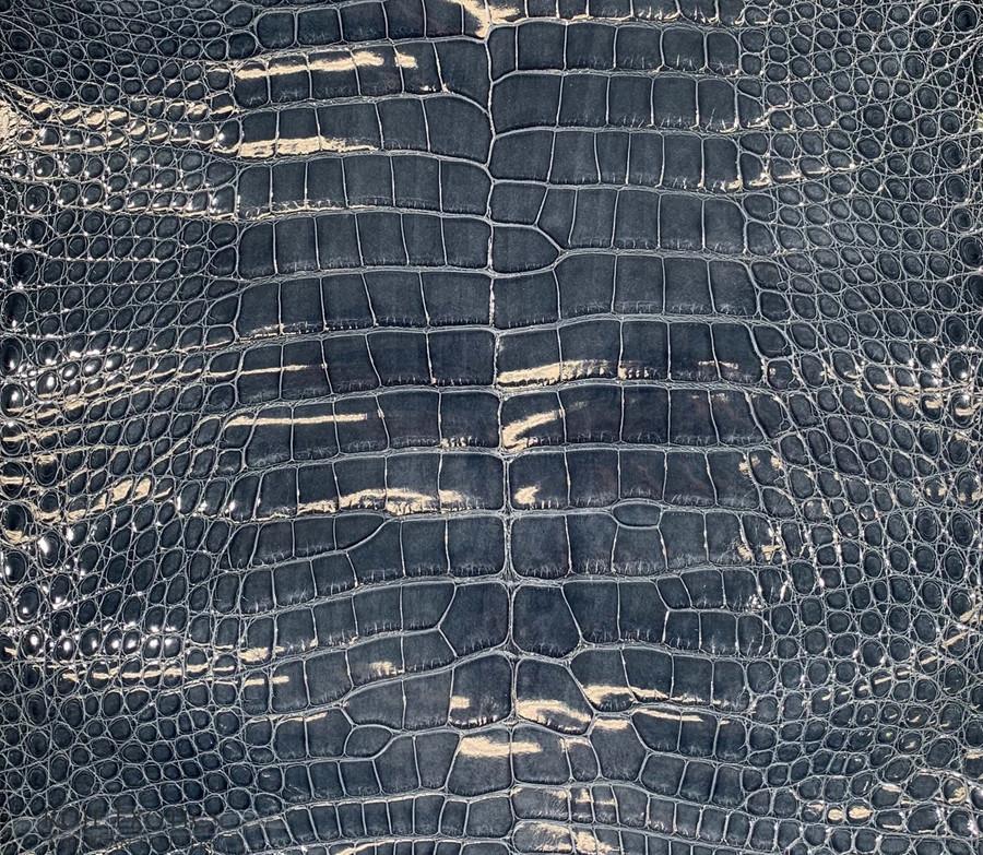 "American Alligator - Belly - Denim - ""Classic"" Glazed"