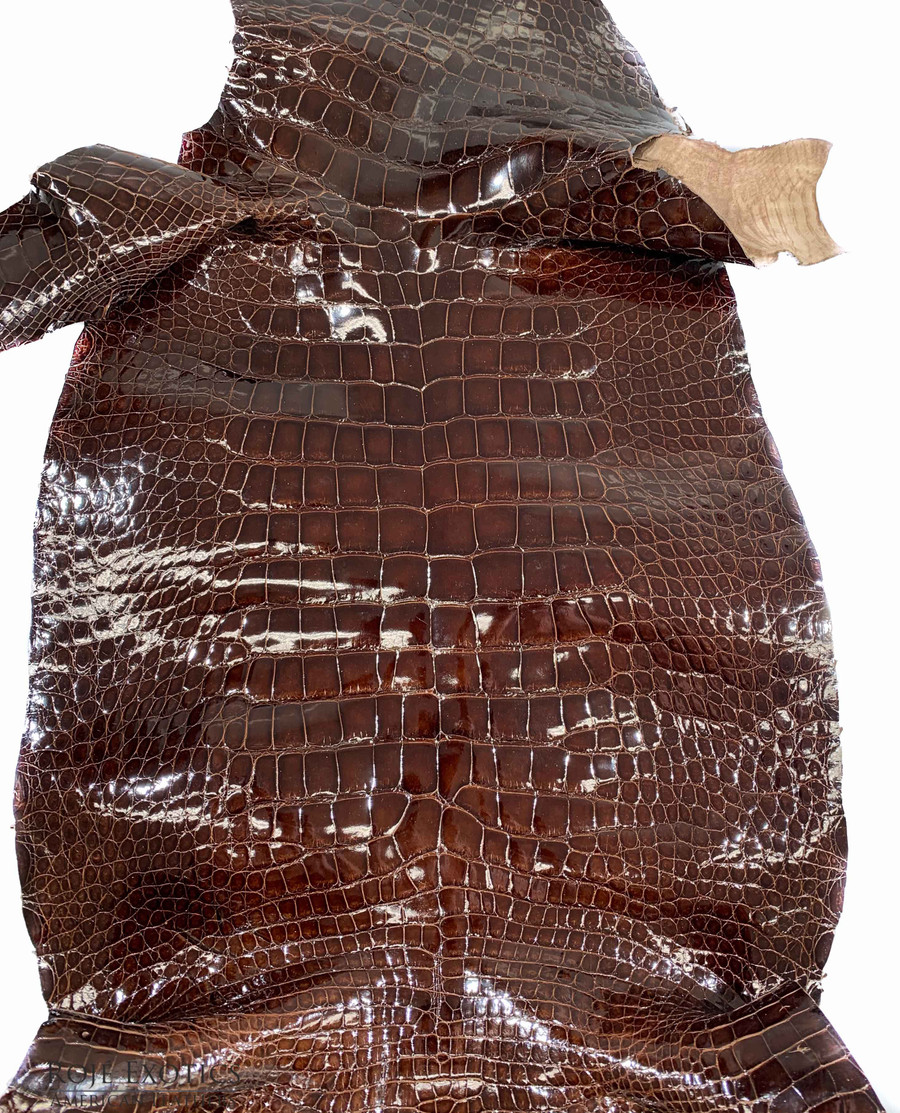 "American Alligator - Belly - Chocolate - ""Classic"" Glazed"