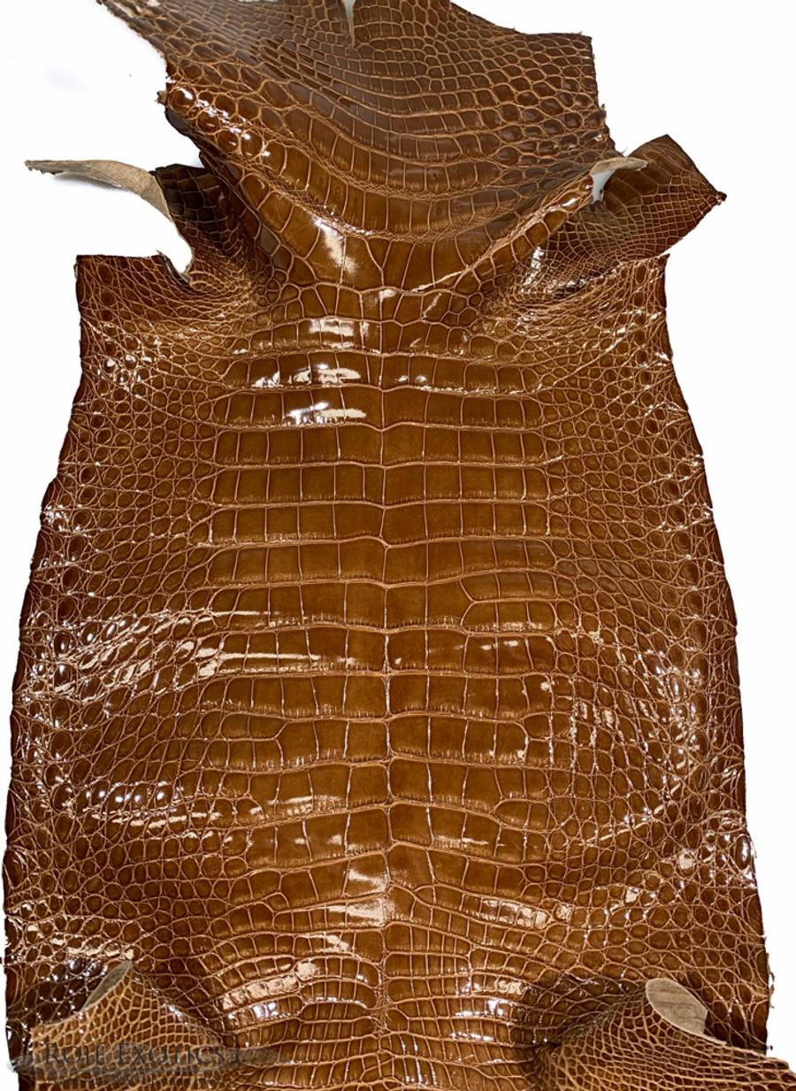 """American Alligator - Belly - Caramel - """"Classic"""" Glazed"""