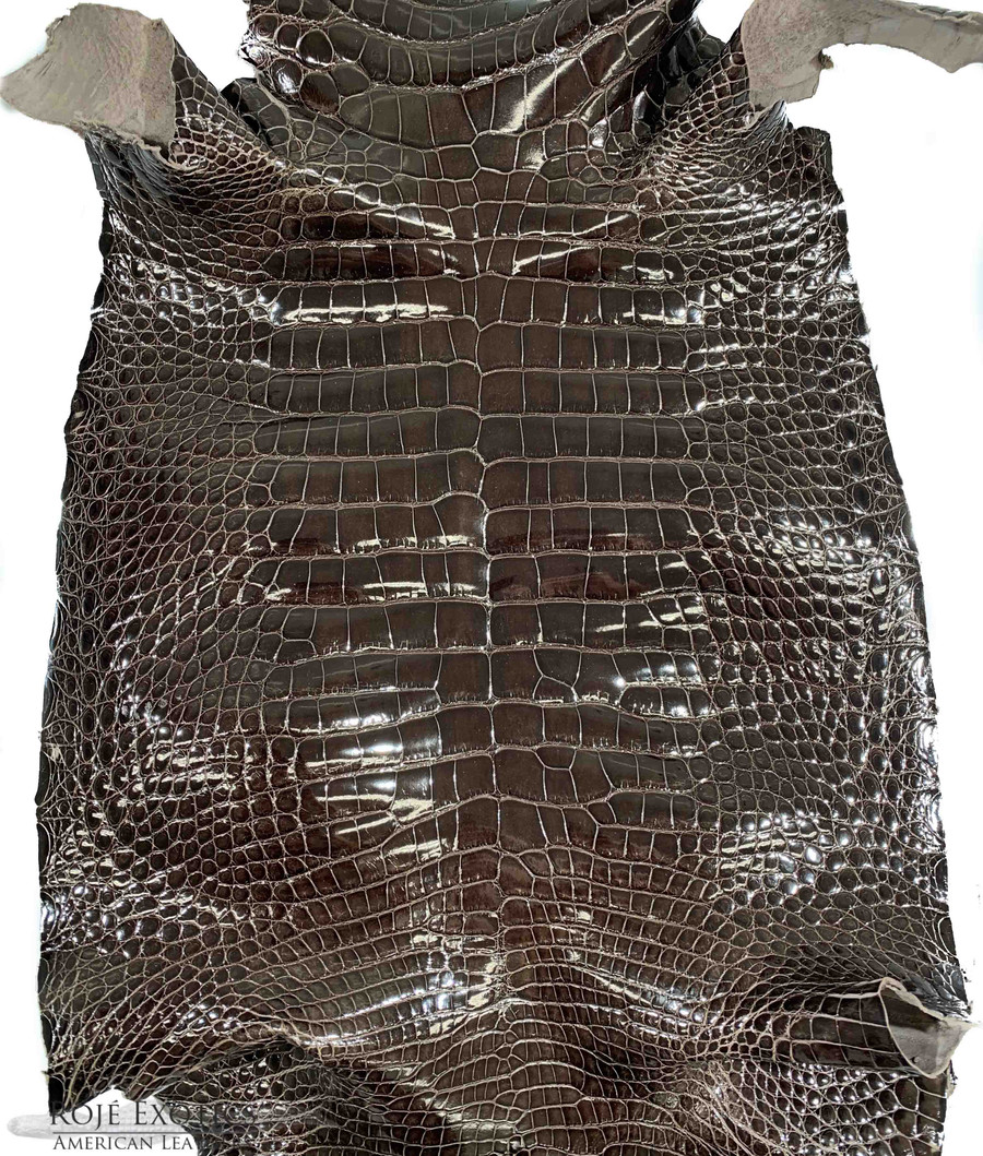 "American Alligator - Belly - Pebble  - ""Classic"" Glazed"