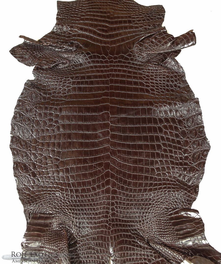 Nile Crocodile Belly -  Matte - Chocolate