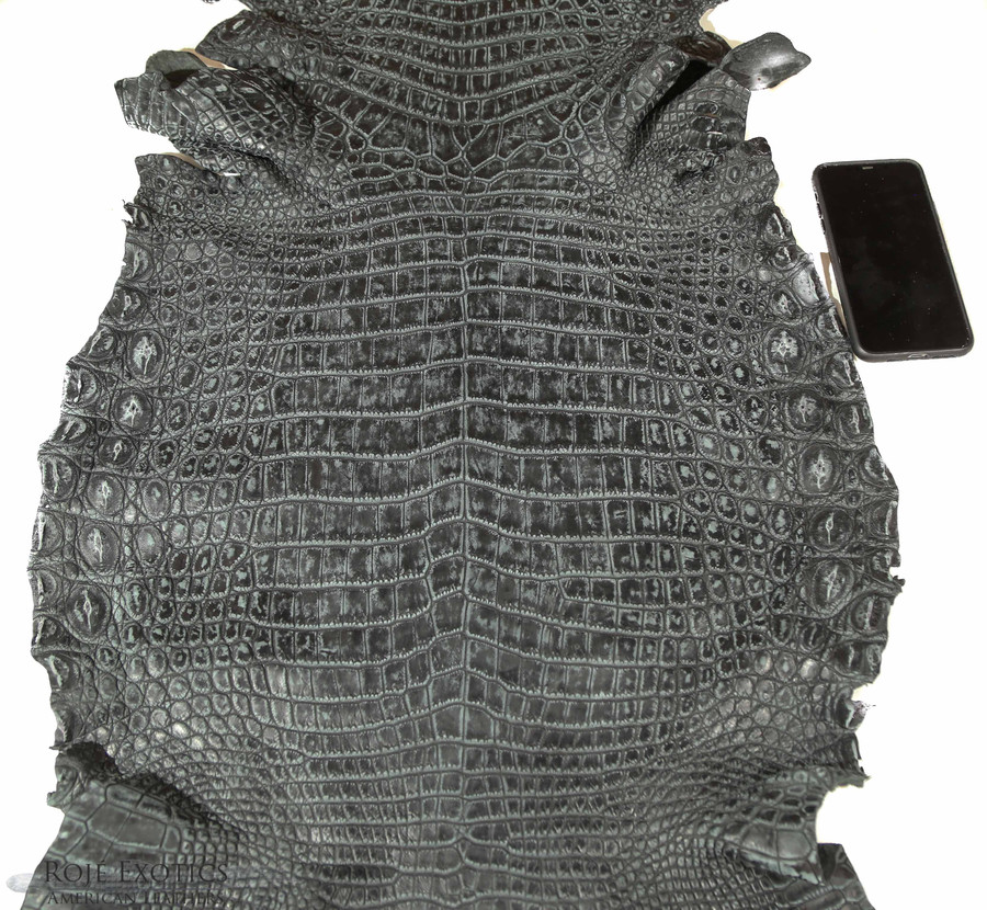 Nile Crocodile Belly -  Matte - Antique Dark Grey