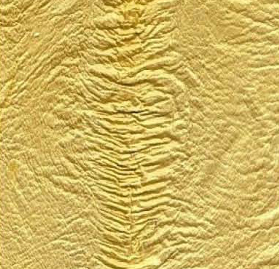 Genuine Eel Skin Panel - Lemon