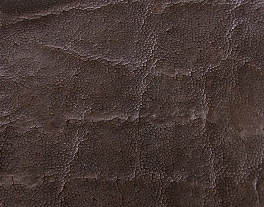 Elephant Skin - Matte - Nicotine (Dark Brown)