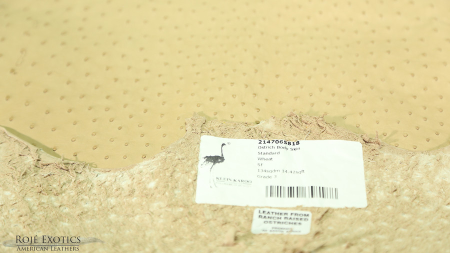 Ostrich Body - Wheat - Matte Finish