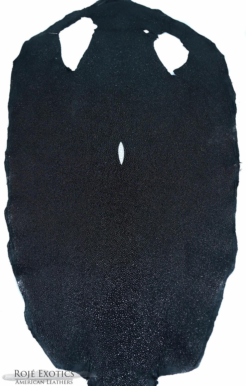 Stingray - Black - Caviar Finish