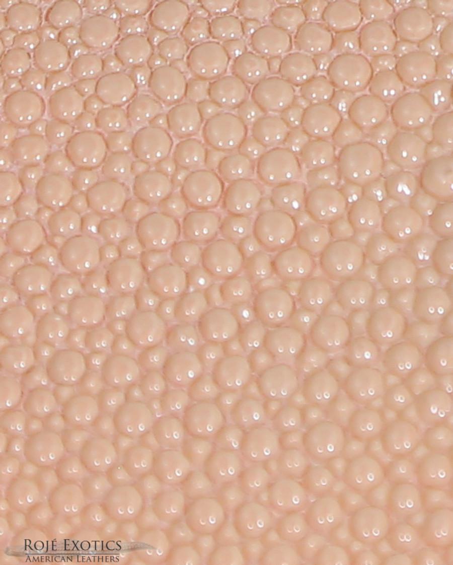 Stingray Skin - Peach Blush  -  Caviar Finish