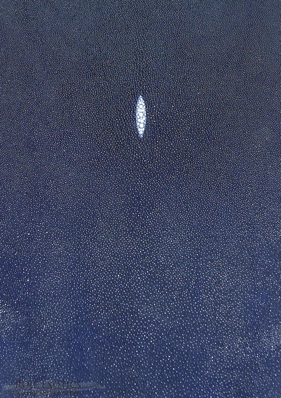 Stingray - Denim Blue - Caviar Finish