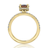 1 ct Grey Round Hidden Halo Yellow Gold Engagement Ring (CR19-YG)