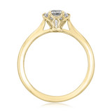 1 ct Danhov Classico 6-Prong Yellow Gold Engagement Ring  (CL117-YG)