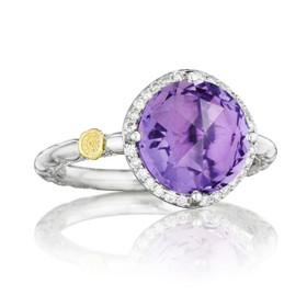 Gemma Bloom Pavé Amethyst Fashion Ring (SR14501)