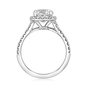 Halo Micro-Prong Engagement Ring (CR172)