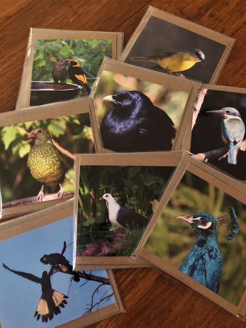 Handmade cards and envelope with original photographs