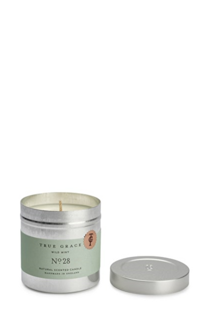 Wild Mint Tin Candle