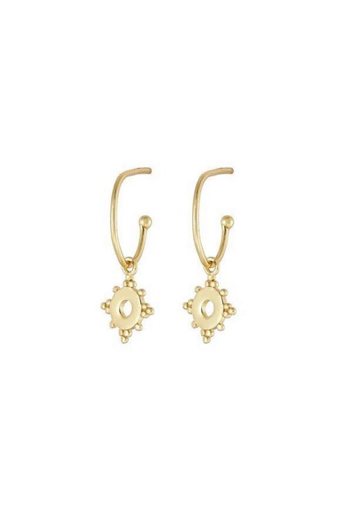 Hoop and Charm Earrings