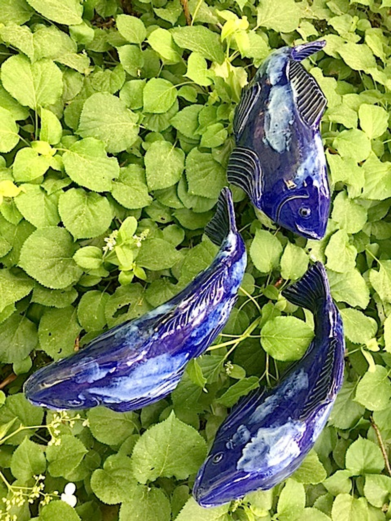 Medium Koi - Cobalt