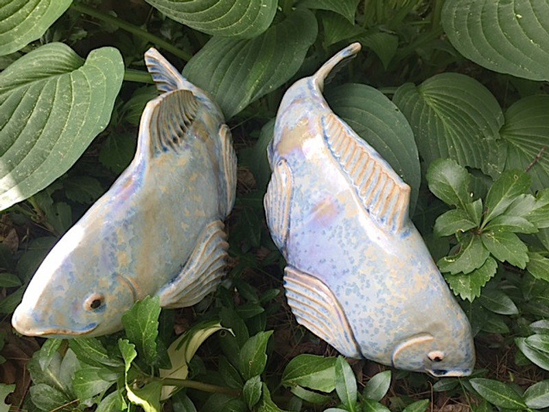 Medium  New Blue Koi